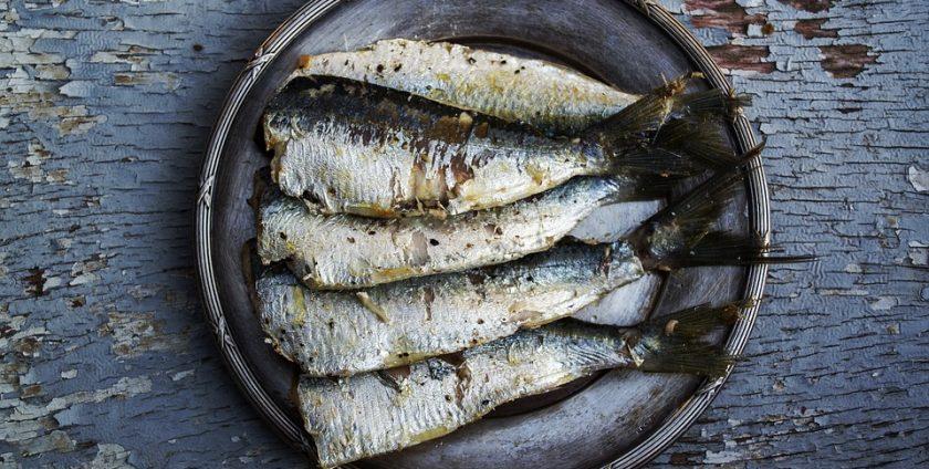 Omega 3 negli alimenti: esempio le sardine